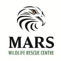 MOUNTAINAIRE AVIAN RESCUE SOCIETY (MARS) Organization